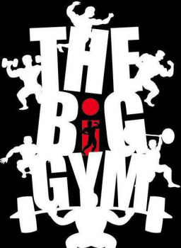 THE BIG GYM
